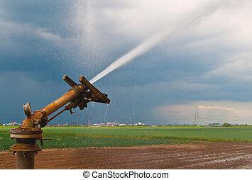 spruzzo acqua, agricoltura