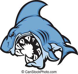 squalo, cartone animato, immagine, mascotte