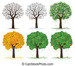 stagionale, albero, silhouette