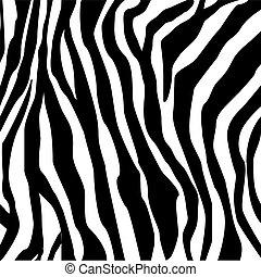 stampa, zebra