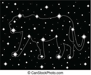 stella, cielo, notte