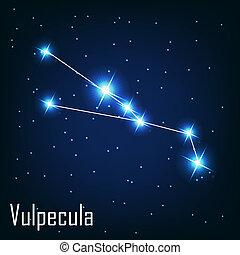 """"""", stella, sky., illustrazione, vulpecula"""", vettore, notte, costellazione"""
