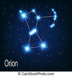 """stella, sky., """"orion"""", illustrazione, vettore, notte, costellazione"""