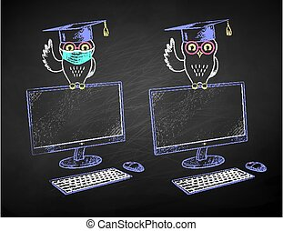 studente, schermo, gufo, seduta, desktop