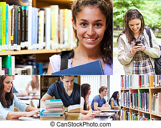studenti, sorridente, collage