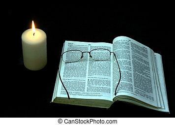 studio, sera, bibbia
