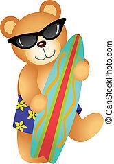 surfing, orso, teddy