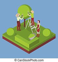 taglio, giardinaggio, agriculture., agricoltura albero, pruner.
