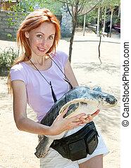 tartaruga, grande, donna, giovane, mani