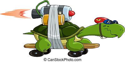 tartaruga, turbo