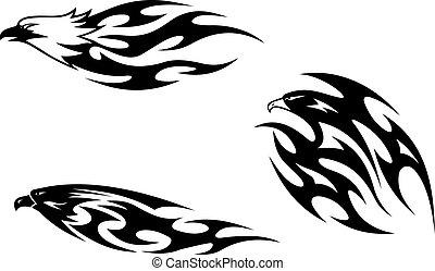 tatuaggi, predatore, uccelli