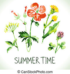 tema, retro, card., fondo, estate, floreale, augurio, acquarello, wildflowers., vendemmia