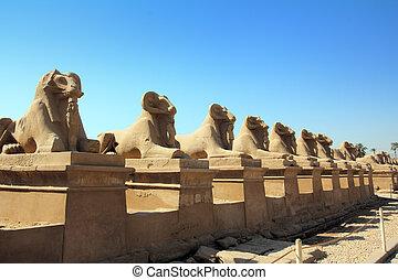 tempio, egitto, statue sfinge, karnak