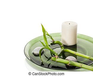 terme, bambù, concetto