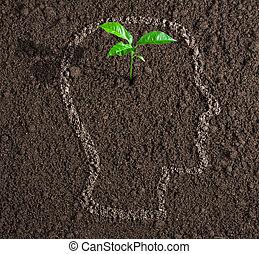 testa, concetto, suolo, dentro, idea, giovane, crescita, umano, contorno