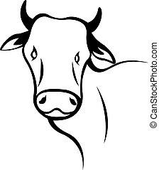 testa, mucca