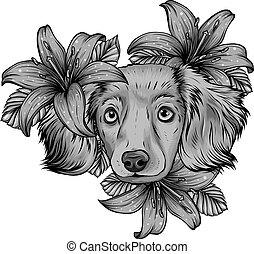 testa, spaniel, cane, wreath., fiore, vettore, disegno, illustration.