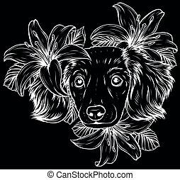 testa, spaniel, silhouette, cane, wreath., fiore, vettore, bianco, illustration.