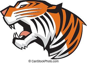 testa, tiger, vettore, ruggire, vista laterale