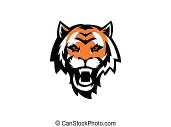 testa tigre