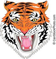 testa tigre, mascotte