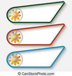 testo, scatole, set, tre, fiore
