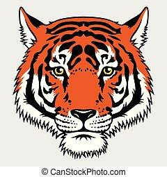 tiger, 016