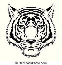 tiger, 019