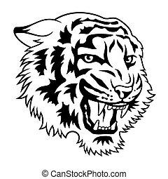 tiger, 021