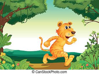 tiger, funzionare avanti, foresta