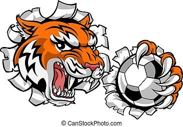 tiger, giocatore calcio, animale, football, sport, mascotte