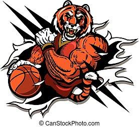 tiger, giocatore, pallacanestro, mascotte