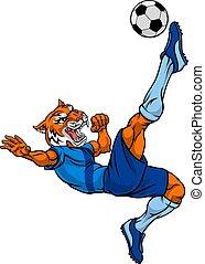 tiger, giocatore, sport, mascotte, calcio, animale, football