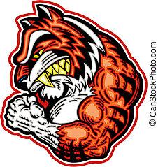 tiger, muscolare, mascotte