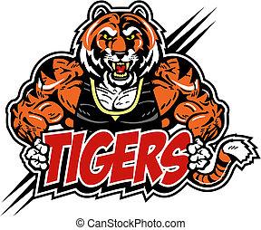 tiger, muscolare, media