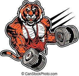 tiger, pesista