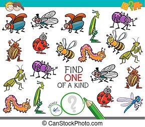 tipo, gioco, insetto, caratteri, uno