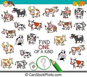 tipo, trovare, caratteri, mucca, uno