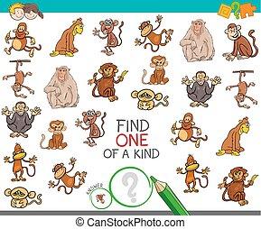 tipo, trovare, scimmia, caratteri, uno