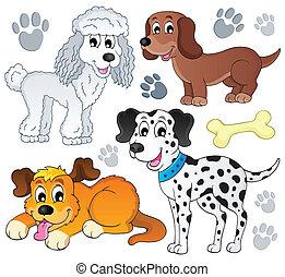 topic, immagine, cane, 3
