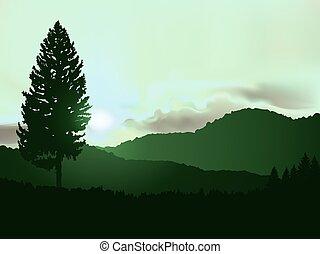tramonto, immagine, paesaggio.