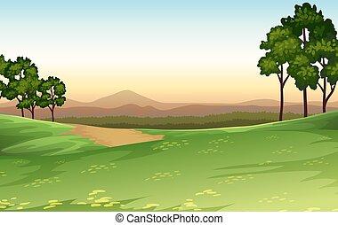 tramonto, scena, natura