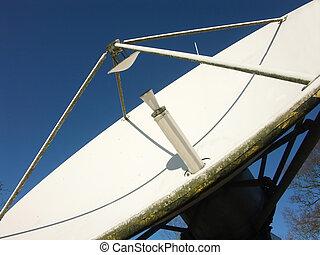 trasmissione, piatto, pietanza, satelite
