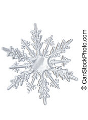 trasparente, inverno, snowflake.