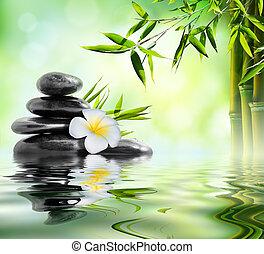 trattamento, massaggio, giardino, terme