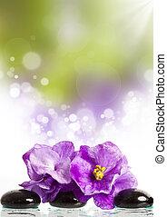 trattamento, terme, pietre, fiore, massaggio, rosa