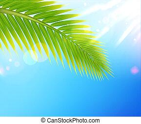 tropicale, estate, fondo
