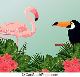 tropicale, foglie, flamish, tucano, fiori