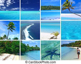 tropicale, fotomontaggio