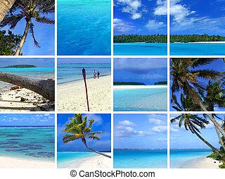 tropicale, fotomontaggio, iii